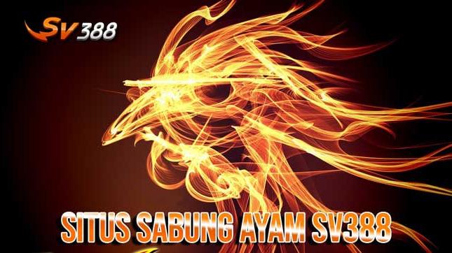 AGEN SV388 - SITUS JUDI SABUNG AYAM TERBAIK - SV388 AGENT